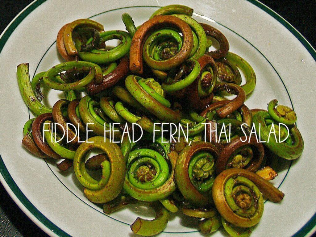 Washed Fresh Fiddle-Head Fern