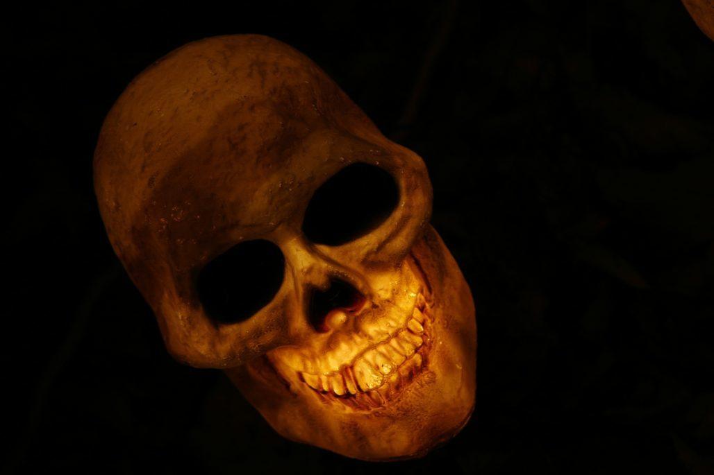 skull-570975_1920-1028x685-min