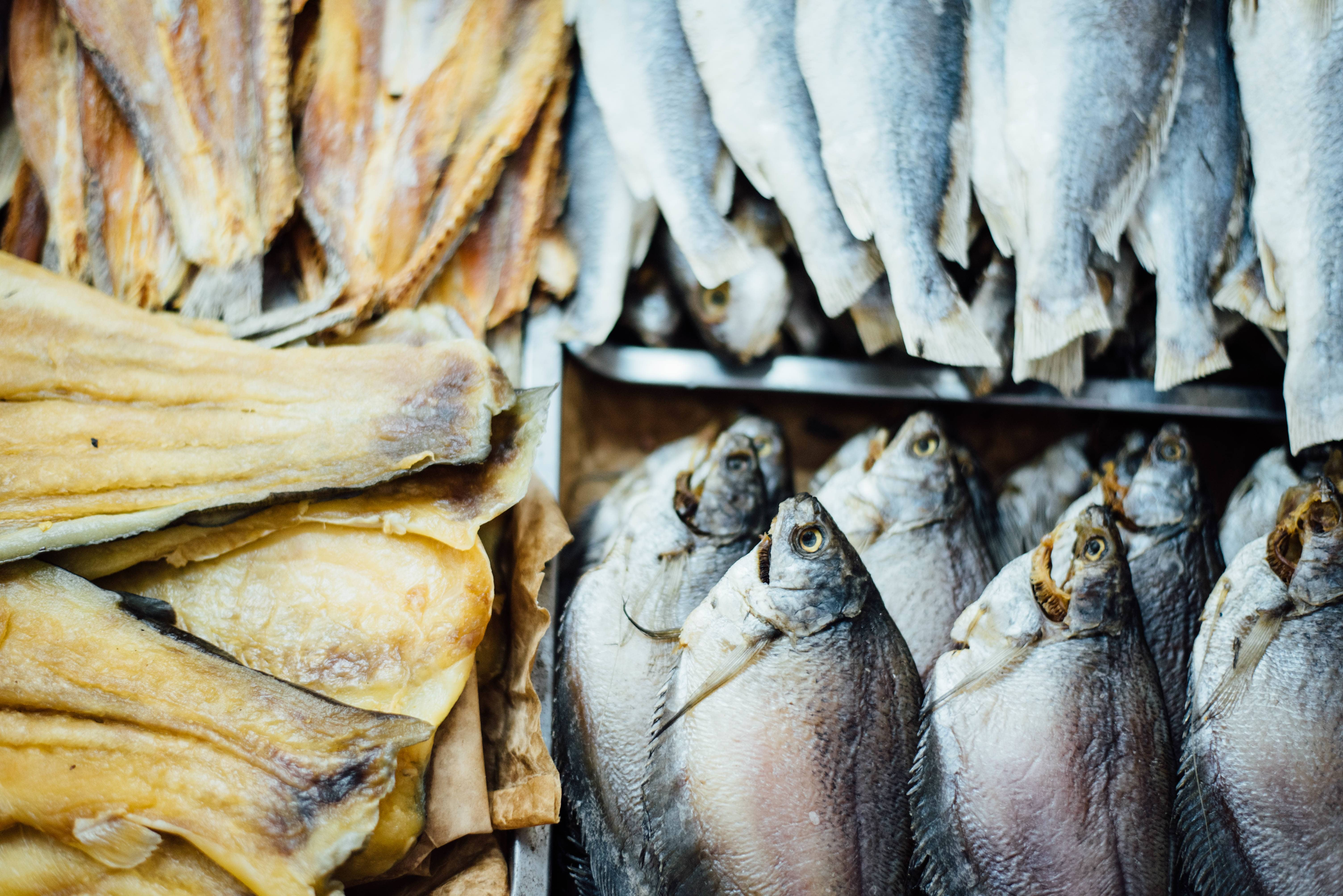 Heavy Metals In Fish