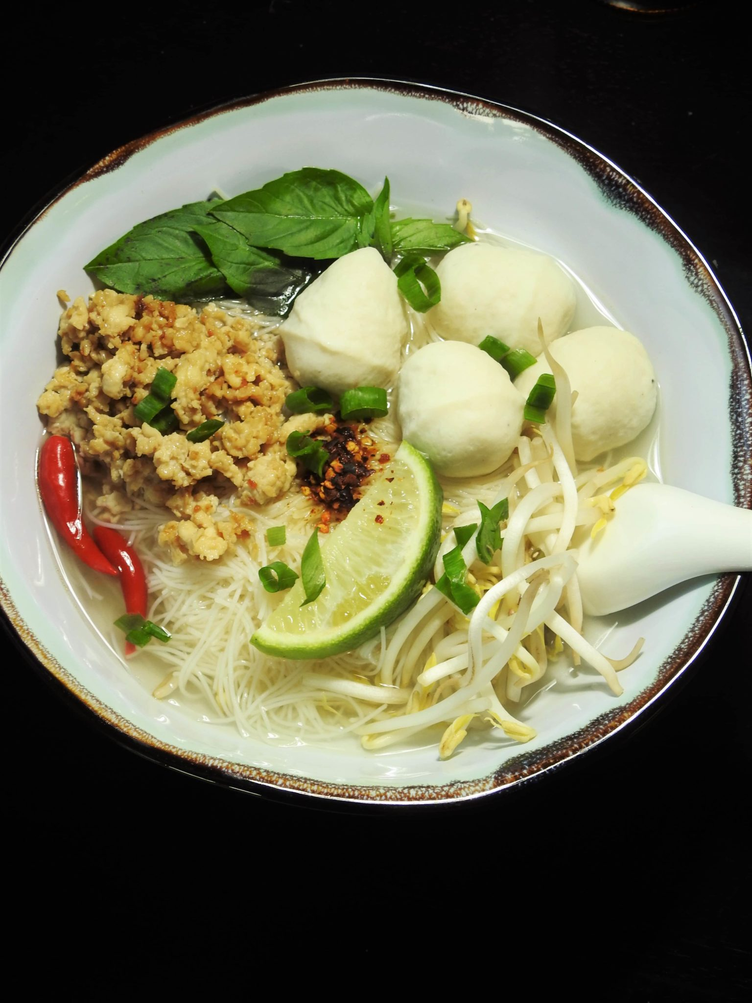 Noodle soup with ground chicken and fish balls healthy for Thai fish soup