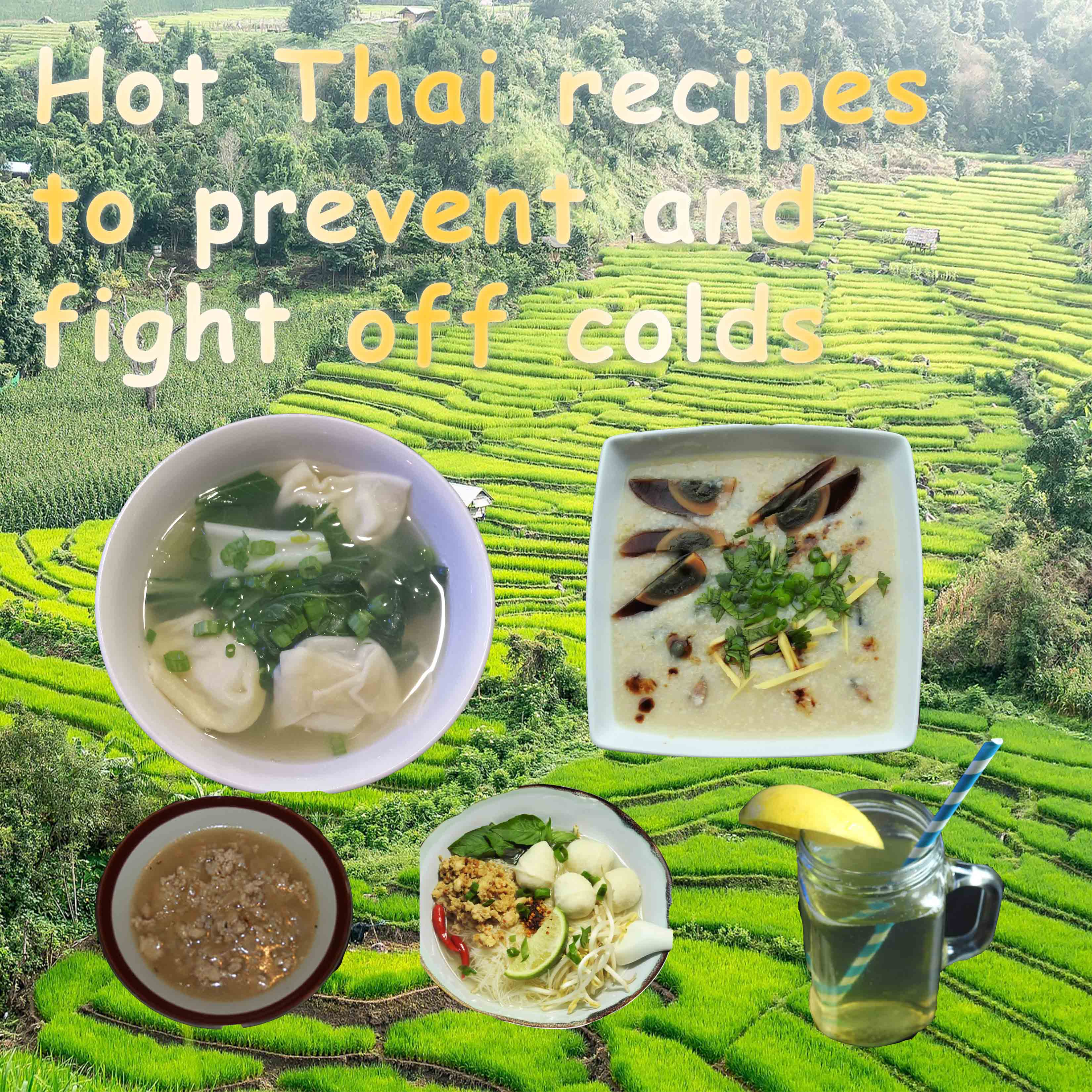 Hot Thai Recipes that may help prevent speed recovery from colds